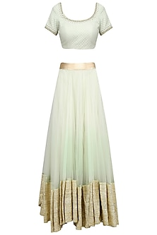 Light Green and Gold Gota Patti Work Lehenga Set