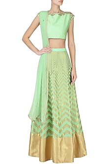 Mint Green Banarasi Embroidered Lehenga Set by Amaira
