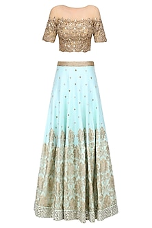 Powder Blue Embroidered Skirt and Gold Mirror Work Blouse Set