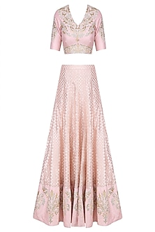Pale Pink Embroidered Lehenga Set by Amrita Thakur