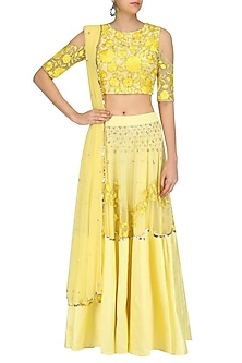 Buttercup Floral Embroidered Lehenga  and Blouse Set by Ank By Amrit Kaur