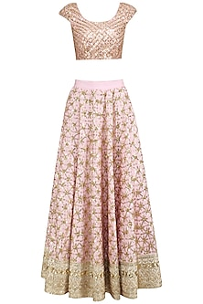 Blush Pink Floral Jaal Embroidered Lehenga Set