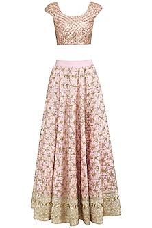 Blush Pink Floral Jaal Embroidered Lehenga Set