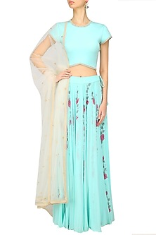 Arctic Blue Embroidered Crop Top and Hand Painted Skirt Set by Baavli