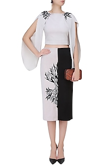 Cafe Du Lait and Black Color Blocked Pencil Skirt by Babita Malkani