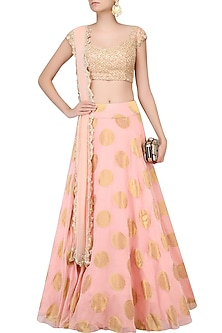 Light Peach Embroidered Banarasi Lehenga Set by Chhavvi Aggarwal