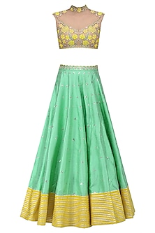 Green and Yellow Floral Embroidered Sheer Blouse and Lehenga Set