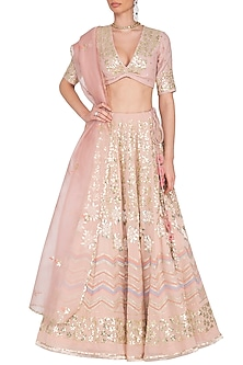 Blush Embroidered Lehenga Set by Devnaagri