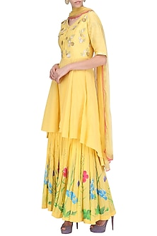Mango Embroidered Kurta with Hand Painted Gharara Pants Set by Devnaagri