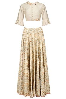 Ivory Ikat Print Skirt and Floral Embroidered Crop Top Set