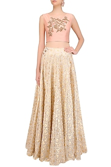 Peach Bird Motif Embroidered Crop Top with Skirt by J by Jannat