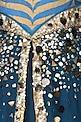 JJ Valaya designer Gowns