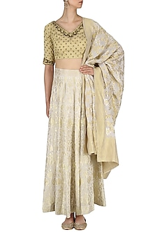 White and Gold Embroidered Handloom Lehenga Set by Neha Khanna