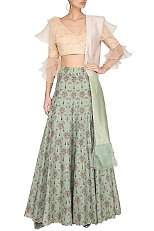 Pistachio Green Embellished & Printed Lehenga Set by Pranay Baidya