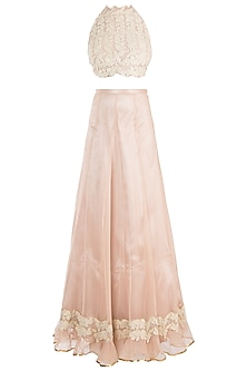Peach Embroidered Lace Skirt Sari