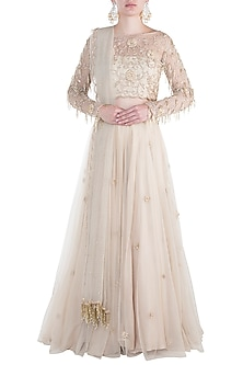 Beige embroidered lehenga set by Rishita And Mitali