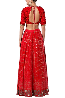 Red embroidered crop top with skirt by ROCKY STAR