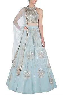 Blue Embellished Lehenga Set by Riddhi Majithia