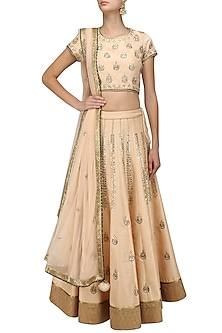 Peach and Silver Embroidered Motifs Lehenga Set by Ruhmahsa