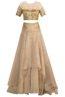 Golden Embroidered Lehenga Skirt With Blouse by Shivangi Jain