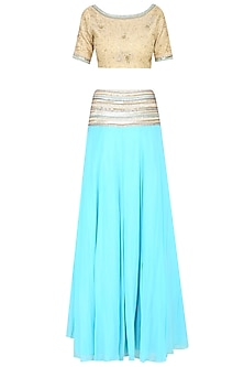 Light Blue and Gold Zari Embroidered Lehenga Set