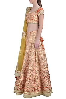 Brick Red Embroidered Lehenga Set