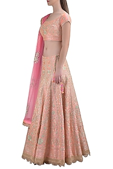 Powder Pink Embroidered Lehenga Set