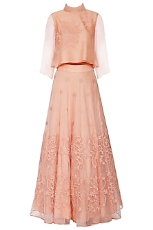 Soft Peach Embroidered Top with Lehenga Skirt
