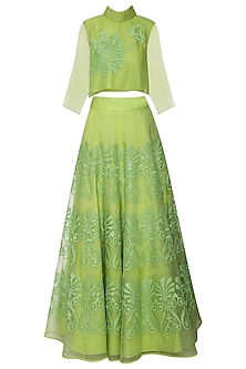Leaf Green Embroidered Top with Lehenga Skirt