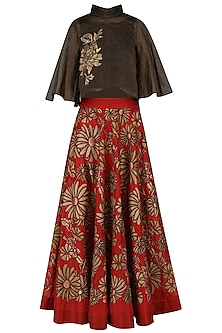 Red Embroidered High Waisted Panelled Skirt with Oxidised Crop Top
