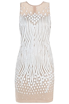 White Embroidered Net Dress