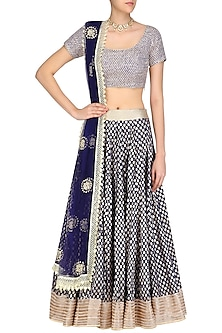 Navy Blue Jaal Embroidered Blouse and Foil Work Lehenga Skirt Set by Umrao Couture