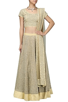 Beige Cutdana Embroidered Lehenga Set by Vasavi Shah