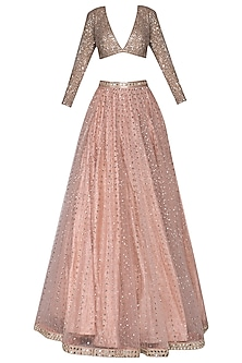 Blush Pink and Light Brown Embroidered Lehenga Set